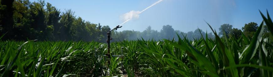 Accessori per irrigatori