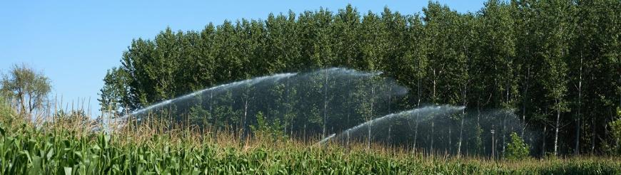 Irrigatori lunga-media gittata a turbina
