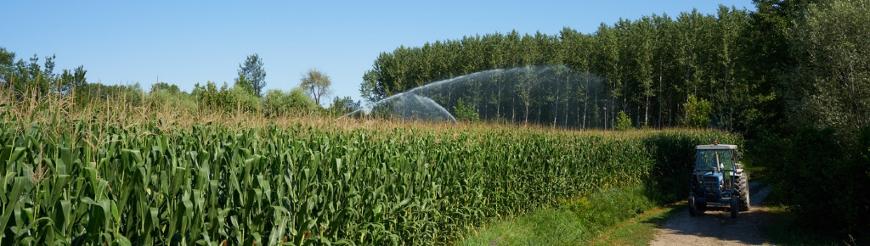 Irrigatori media-corta gittata a impulsi
